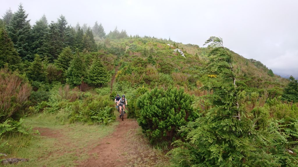 Mountain Bike Madeira Island Adventure